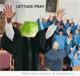 Name:  lettuce pray.jpg Views: 189 Size:  5.8 KB